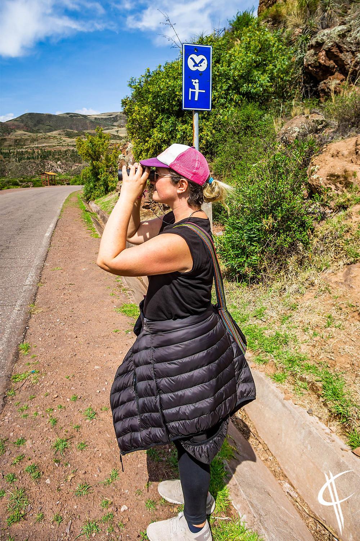 Birdwatching!
