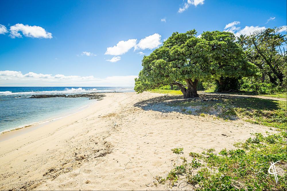 Beautiful beach on 'Eua