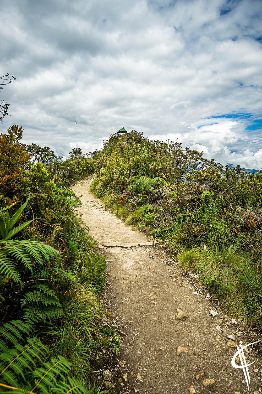 Way to the top, Machu Picchu Mountain