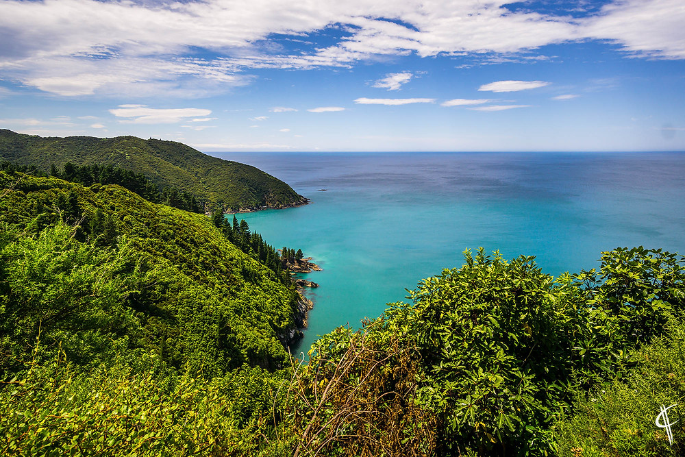 First impressions of the south island