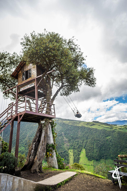 The Swing, La casa del arbol