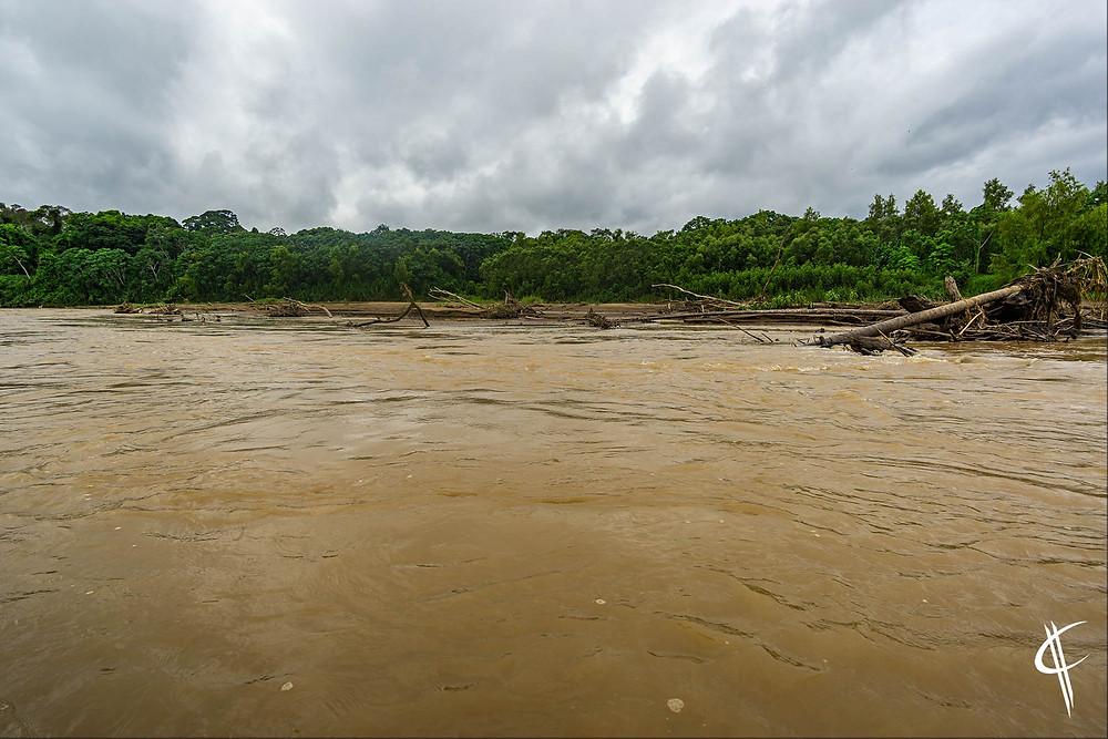 Tambopata River, part of the Amazone