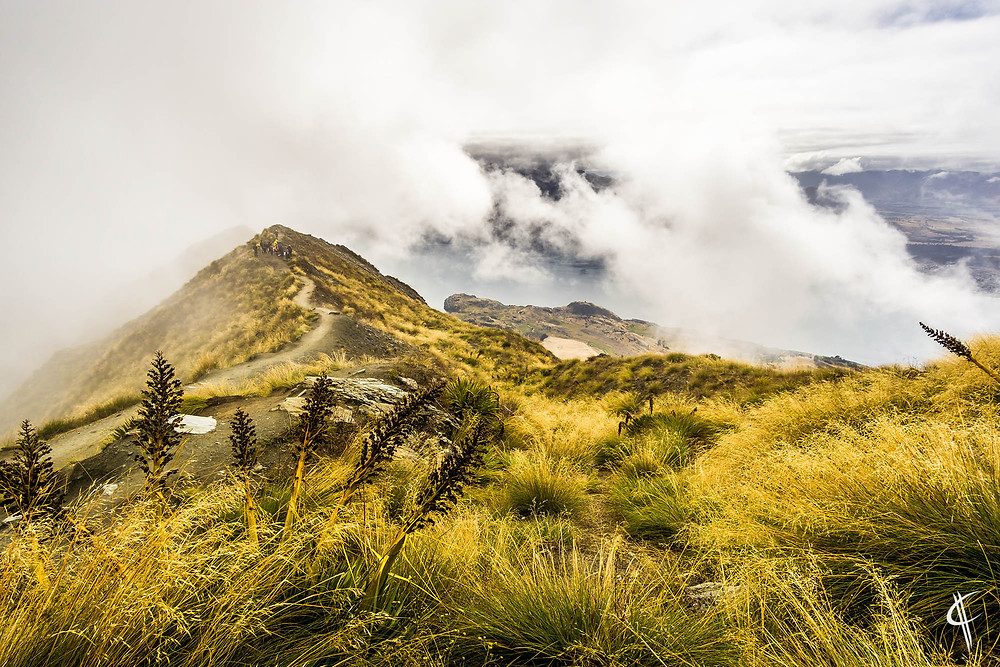 Roys Peak Lookout in the clouds