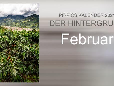 Der Hintergrund : Februar