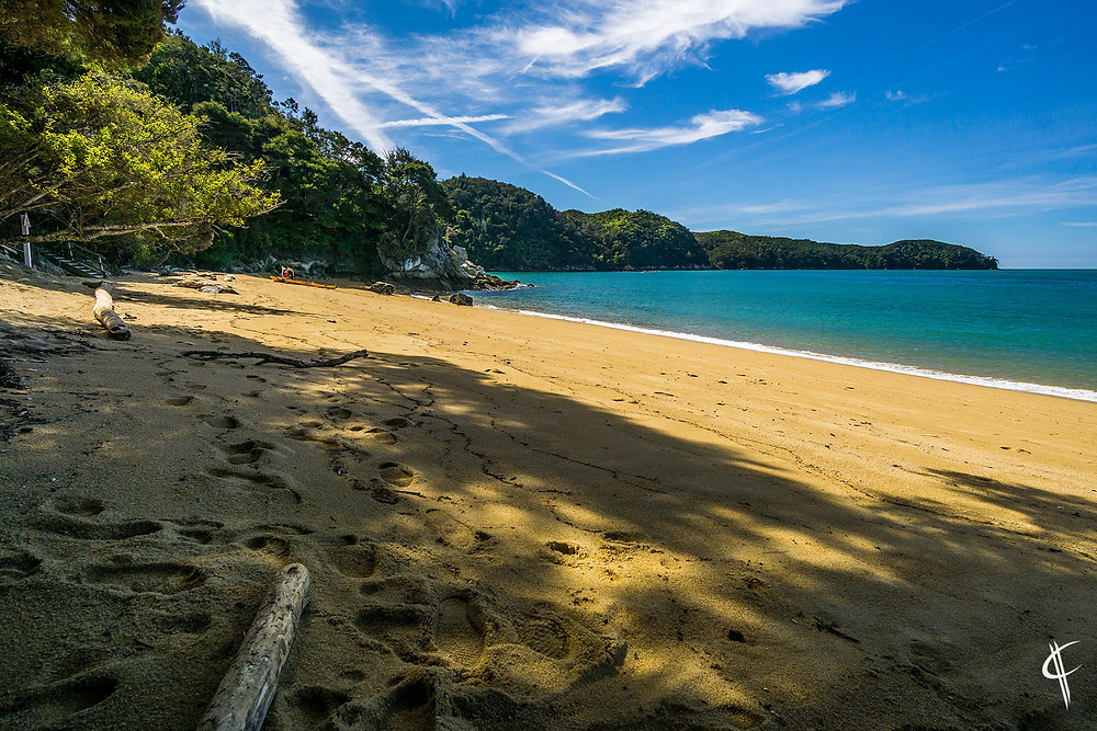 Beach in Abel Tasman
