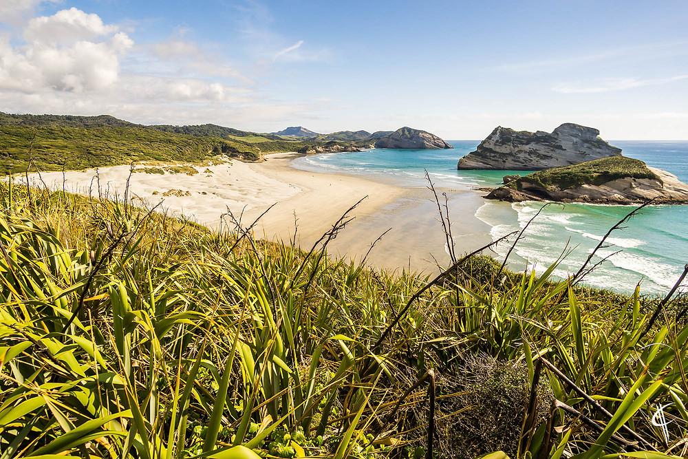 Secret Lookout, Wharariki Beach