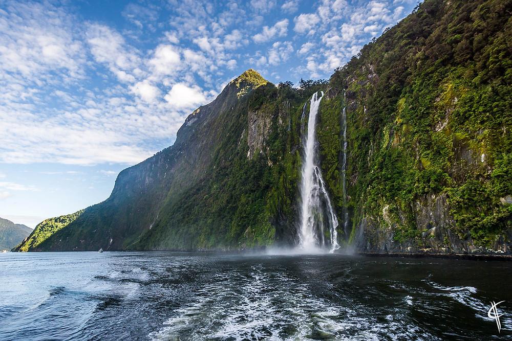 Stirling Falls / Milford Sound