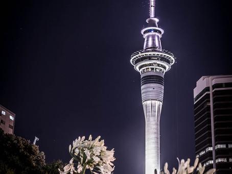#PeCasAdventures 14: New Zealand