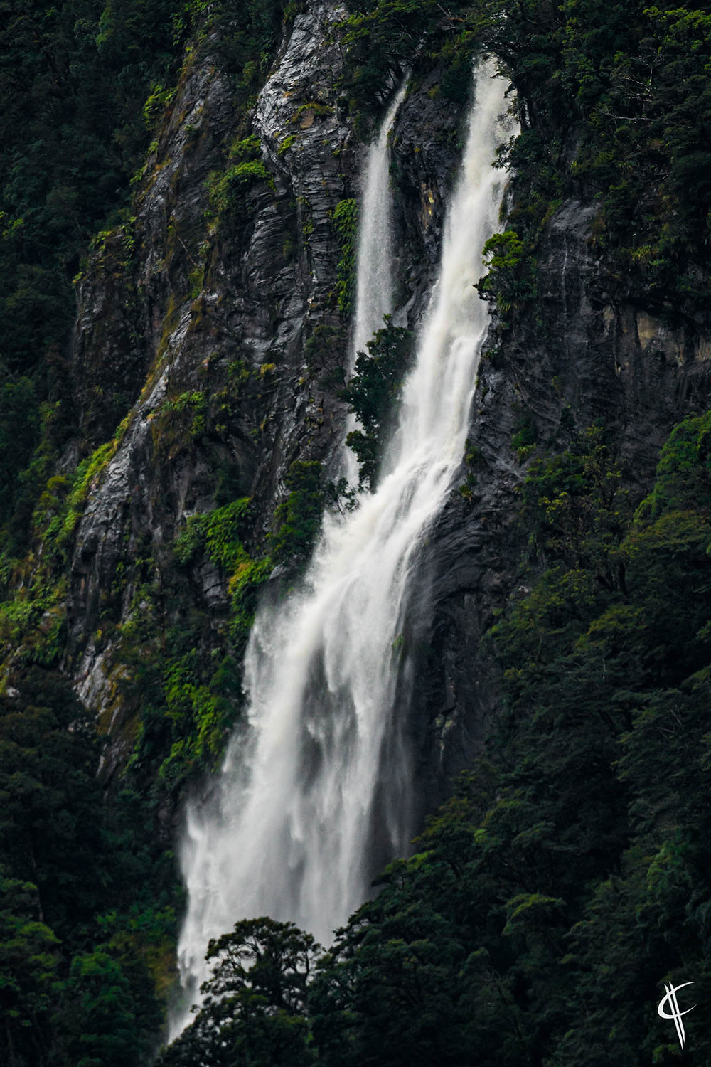One of thousand waterfalls in Doubtful Sound