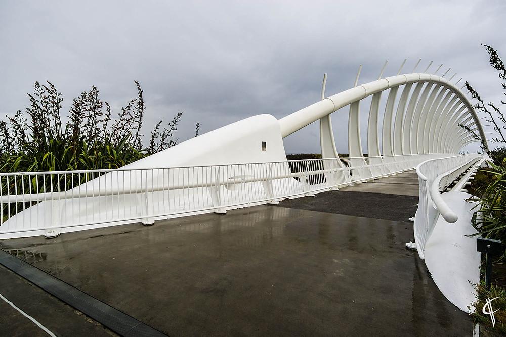Te Rewa Rewa Bridge, New Plymouth
