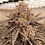 Thumbnail: MAX-660 Full Spectrum LED Grow Light