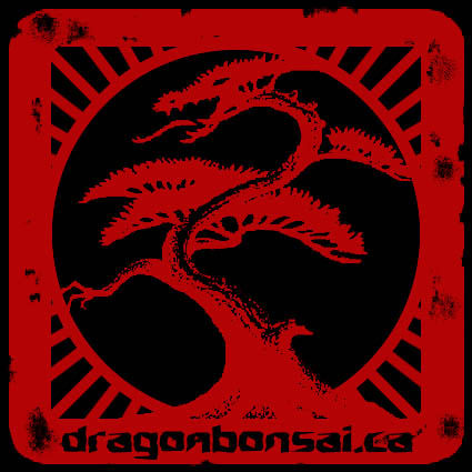 Dragon_Bonsai_Stamp_1.jpg