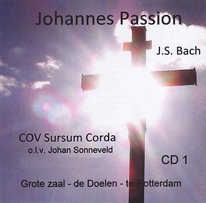 Johannes De Doelen 2013 Kopie.jpg
