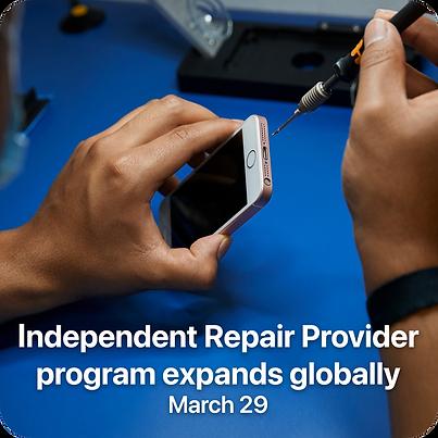 Repair Program.png