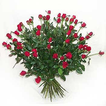 Long-stem Roses