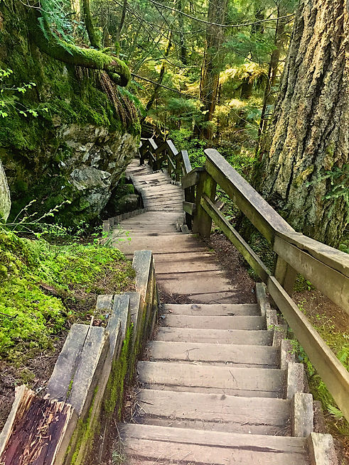 Canva - steps.jpg