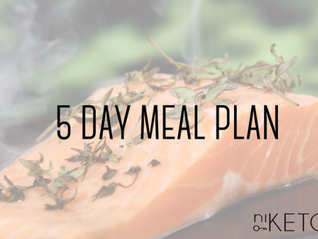 meal plan : 5 day