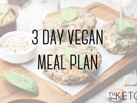 3 Day Vegan Meal Plan