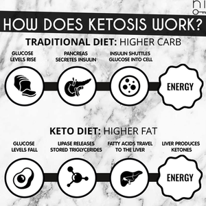 ketogenic diet: scientific terminology explained
