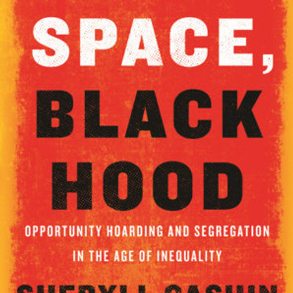 White Space, Black Hood: A Discussion with Professor Sheryll Cashin featuring David Whettstone
