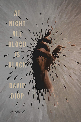 At Night All Blood Is Black (Hardcover)