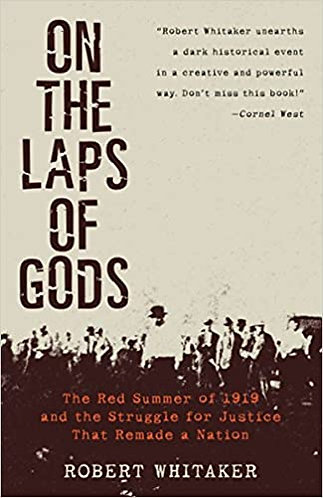 On the Laps of Gods: The Red Summer of 1919 and the Struggle for Justice That R