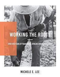 Working the Roots:Over 400 Years of Traditional African American Healing