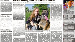 Dogachieve im Wochenbericht 2015
