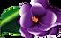Premiere maid violet.png