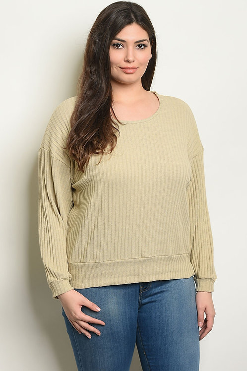 Taupe Plus Size Top