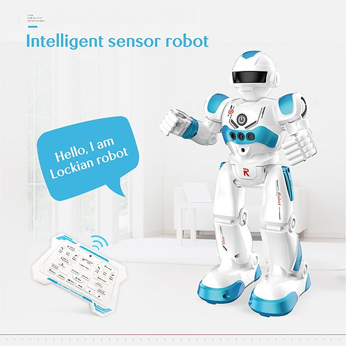 Remote Control Robot Multi-Function USB Charging Children's Toy RC Robot