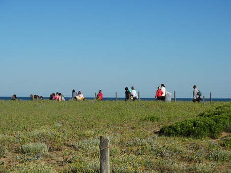 Happy Yoga plage : 9 & 30 août 9h