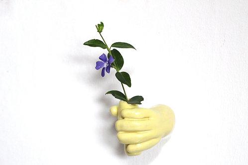 Plant a hand yellow shine