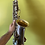 "Thumbnail: Conn New Wonder II ""Chu Berry"" Alto Saxophone - gold wash bell"