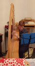 1-Harp_P3290852-cropped.jpg