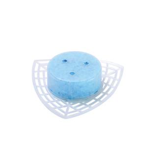 Toilet Crystal Para Block Triangle