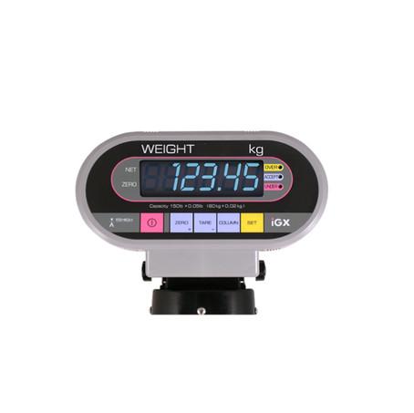 Ishida IGX Series Digital Weighing