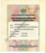 Licensing DA 5.jpg