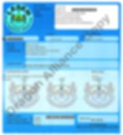Licensing DA 8.jpg