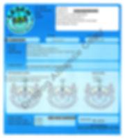 Licensing DA 3.jpg