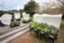 Vegepod - Tauranga Home Show Exhibitor Spotlight