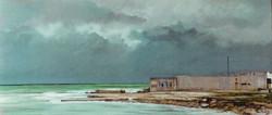 Il mare verde, 1979