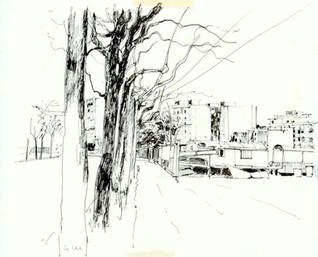 Periferia e alberi