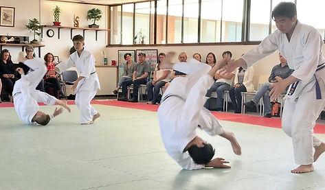 Aikido rolling.jpg
