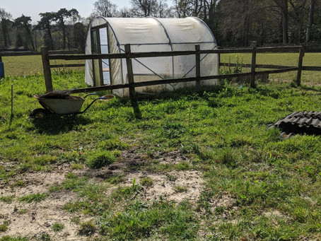 Why regenerative agriculture