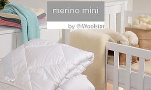 Merino Mini WPA1.jpg