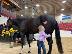 Loving Kimes and horses