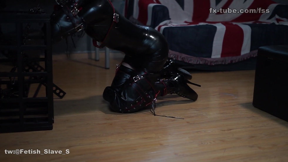 Latex slave become puppy