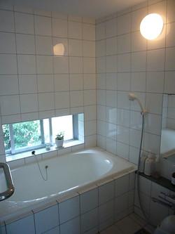 浴室からは坪庭のソヨゴが見えます