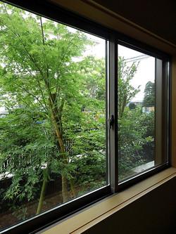 和室からイロハモミジを見る
